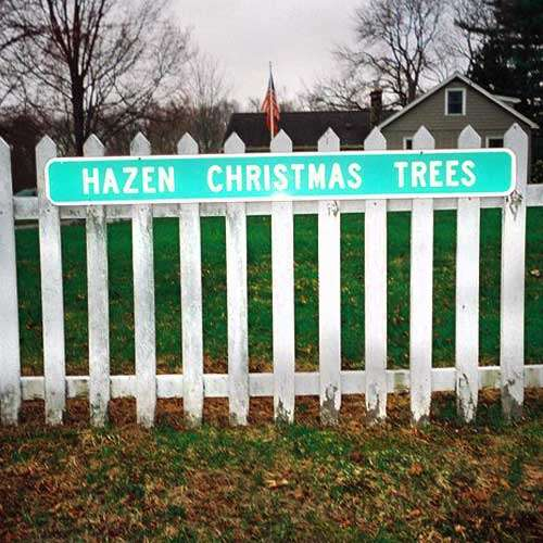 Hazen Tree Farm