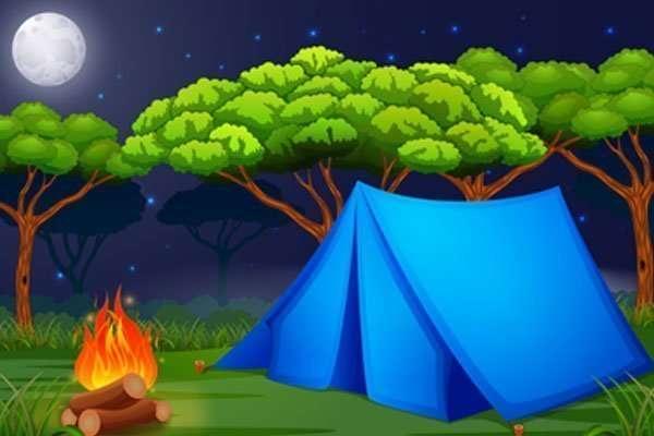 Camping at Hurd Park